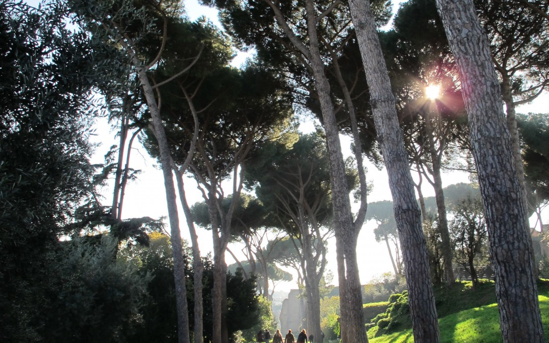 Rus in urbe – a bucolic stroll across the Palatine