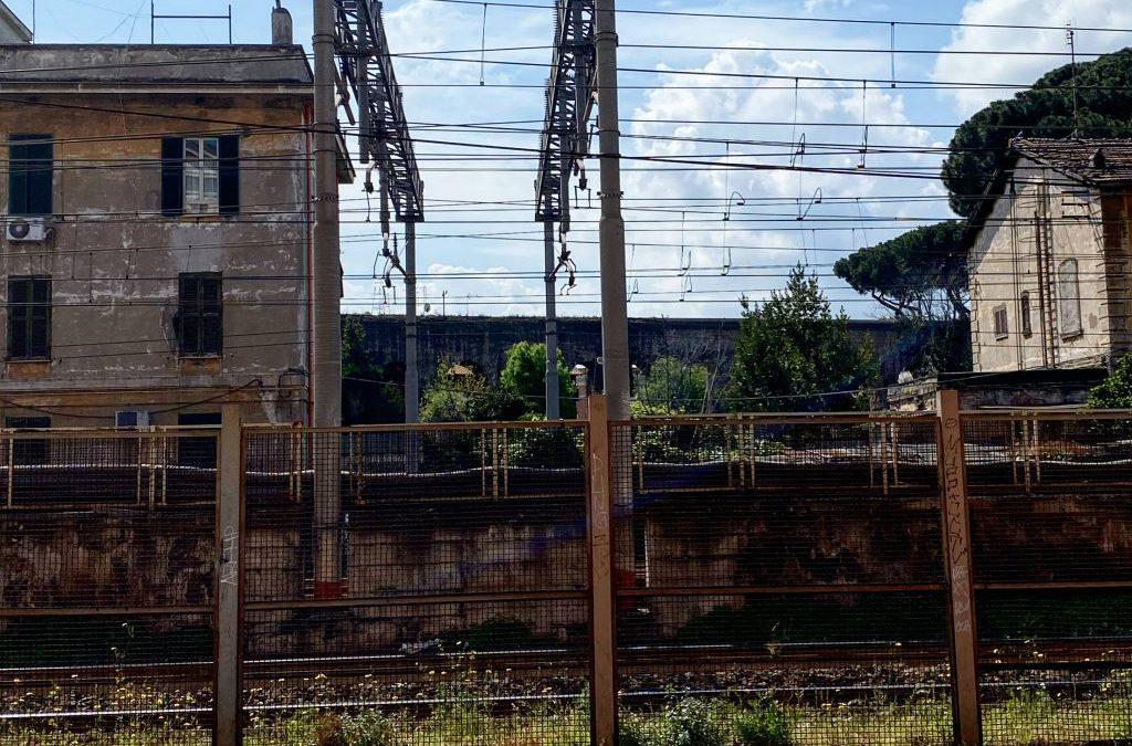 Roman Quarantine – Day 22